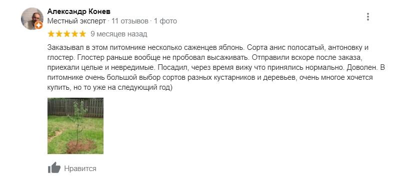 Александр отзыв